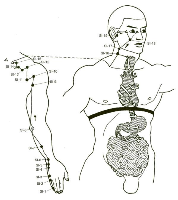 Constipation & Diarrhée