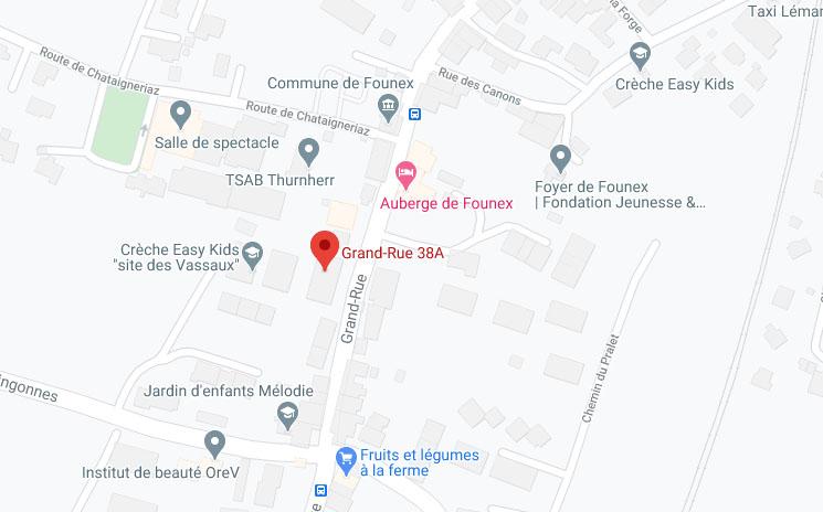 Plan de Founex